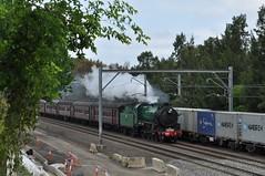 Steaming by (highplains68) Tags: railroad rail railway australia nsw newsouthwales aus rhodes northernline sydneytrains 3642 concordwest mainnorth 36class