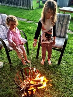 Toasting marshmallows in the backyard