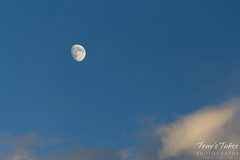 October 4, 2014 - A Waxing Gibbous moon in the early evening. (Tony's Takes)