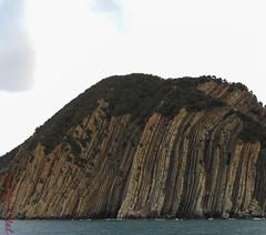 scogliera Sestri Levante (maxphotography81) Tags: colors landscape nikon mare inverno s3000 scogliera sestrilevante