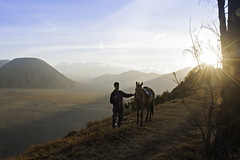 DSC_8607 (Darmin Ladiro) Tags: travel vacation indonesia traveller bromo horseman