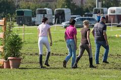 DSC06087_s (AndiP66) Tags: horse oktober macro sports sport schweiz switzerland mark sony luzern sp ii di if alpha tamron concours 77 pferd 70200 equestrian derby f28 ld horsejumping 70200mm wettbewerb 2014 springen eschenbach kantonsolothurn inwil reithof springreiten cantonsolothurn stleodegar andreaspeters pferdespringen 77m2 a77ii ilca77m2 77ii slta77ii