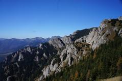 Valea Izvorul lui Cârstocea