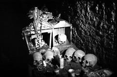 (Donna Concetta & Friends) (Robbie McIntosh) Tags: leica blackandwhite bw film monochrome analog 35mm skulls candles fuji bokeh f14 jesus streetphotography hc110 rangefinder bn 1600 negative sweat bones neopan analogue skeletons m2 summilux biancoenero argentique leicam2 wideopen dyi selfdeveloped fujineopan1600 800iso pellicola concetta analogico leicam filmisnotdead kodakhc110 hc110dilb autaut leicasummilux35mmf14i leicasummilux35mmf14 cimiterodellefontanelle animepezzentelle summilux35mmf14preasph capuzzelle summilux35mmf14i donnaconcetta