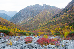 (GenJapan1986) Tags: 2014        distagont225 zf2  autumn landscape nagano japan travel nikond600 mountain carlzeiss