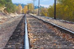 Straight as a rail? (John Sieber) Tags: railroad montana fallcolors traintracks bitterrootriver
