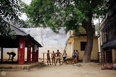 Wrestlers Varanasi India Danny Fernandez Photography (2 of 16) (Danny Fernandez) Tags: varanasi wrestlers travelphotography amhara kushti vsco documentaryphotographyindia x100s documentarytravelphotography dannyfernandezphotography