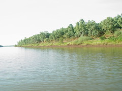 Victoria River (helmutnc) Tags: hg sweetfreedom specanimal hennysanimals dailynaturetnc12
