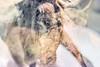 Reindeers (pni) Tags: reindeeer taxidermy multiexposure multipleexposure tripleexposure museum thefinnishmuseumofnaturalhistory luonnontieteellinenkeskusmuseo museo naturhistoriskacentralmuseet luomus helsinki helsingfors finland suomi pekkanikrus skrubu pni animal diorama