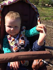 Sunshine and rice crackers (kayatkinson-simson) Tags: kane 9monthsold mamaspapasstroller dicksonact barefeet