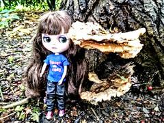 big mushroom, little Charisma