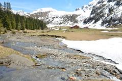 DSC_3410 (d90-fan) Tags: rauris raurisertal natur alpen salzburgerland österreich nationalpark npht hohe tauern wandern krumltal seidlwinkeltal