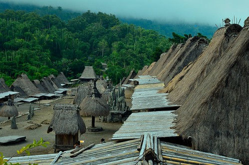 Rooftop of bena traditional villages