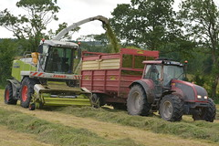Claas Jaguar 900 SPFH filling a Herron Trailer drawn by a Valtra T130 Tractor (Shane Casey CK25) Tags: claas jaguar 900 spfh herron trailer drawn valtra t130 tractor agco red green bartlemy silage silage16 silage2016 grass grass16 grass2016 winter feed fodder county cork ireland irish farm farmer farming agri agriculture contractor field ground soil earth cows cattle work working horse power horsepower hp pull pulling cut cutting crop lifting machine machinery nikon d7100 tracteur traktori traktor trekker trator cignik