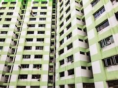 Green (Jerry (jerrywongjh)) Tags: singapore rochor rochorcentre hdb flat housing publichousing housingdevelopmentboard flats colour colourful green limegreen iphone7 shotoniphone7 shotoniphone raw iphone