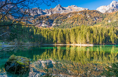 Autunno al Lago di Tovel (lorenzapanizza) Tags: lagoditovel parcoadamellobrenta trentinoaltoadige autumn refletion colors mountains trees green foliage outdoor tree clear river italy travel view yellow panoramic sunny lake shape mirror forest reflection fall blue symmetrical mountain crystal beauty scenic sky tourism background beautiful water nature vacation landscape tovel