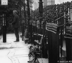 barandillas de una calle de Glasgow (Escocia) (joluardi) Tags: glasgow scotland reinounido gb baradillas baranda barandilla railing railings bw blancoynegro bn blackandwhite uk unitedkingdom greatbritain escocia