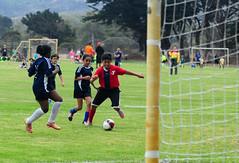 Red Zepplin Sept. 10 Game (RedZepplin) Tags: stevenshepard california pacificgrove unitedstates soccer kids youth ymca redzepplin sports futbol game