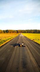 Take It Easy (CoolMcFlash) Tags: person woman lying road street asphalt austria samsung galaxy s5 smartphone sky focus leadingline vanishingpoint frau liegen strase österreich himmel fokus fluchtpunkt fotografie photography alone alleine gerade