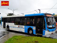 6 1138 Viação Cidade Dutra (busManíaCo) Tags: caio millennium iii mercedesbenz o500u bluetec 5 busmaníaco nikond3100 nikon d3100 buses urbano