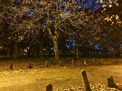 Tooting Bec Common (sixthland) Tags: autumn blipfoto cameraphone common iphone7 night path sodium tootingbec trees