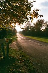 Mailboxes and Road (Georgie_grrl) Tags: princeedwardcounty cottagechoir friendship music social friends roadtrip browniehawkeye squareformat mediumformat vintage itshiptobesquare ontario mailboxes road light sunsetting sun beauty nature