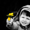 For you ladies (Zeeyolq Photography) Tags: child fleurs flowers gift romance togive milizac bretagne france people