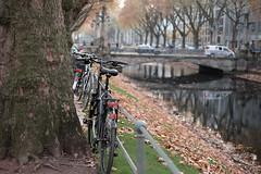 Bike at K, Dsseldorf, Germany 2 (Amselchen) Tags: season autumn germany city dsseldorf canal tree street bike bicycle vehcle water colour bokeh blur dof depthoffield fuji fujinon fujifilm xt10 xf35mmf14r k