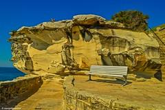 Bondi beach (Sougata2013) Tags: sydney newsouthwales australia bondibeach bondicoogeewalk rockart rock geology landscape