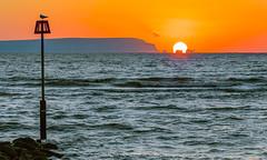 Needles Wave (nicklucas2) Tags: needles seascape isleofwight solent sun wave sea lighthouse sunrise seagull