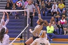 IMG_7855 (SJH Foto) Tags: girls volleyball high school york delone catholic team teen teenager net battle spike block action shot jump midair