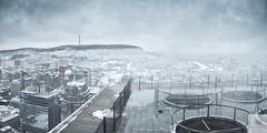 Le fabricant de climat/The climate generator/Klimat generator [Explore] (Elf-8) Tags: montreal cityscape mountroyal snow blizzard skyscraper city building