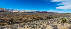 048-RRC160201_47250 (LDELD) Tags: nevada desert rugged dry harsh wild lasvegas redrocknationalconservationarea mountains cliff snow