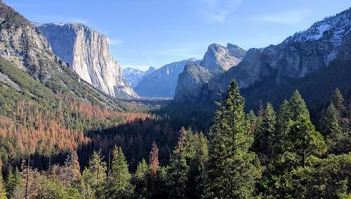 Yosemite Honeymoon