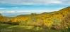 Tardor 1 (Toni Camacho) Tags: tardor autumn moianes lestany