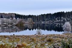 Trossachs ramblings (Anne Young2014) Tags: visitscotland scotspirit scotland trossachs winter