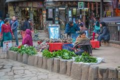 nepal3-99
