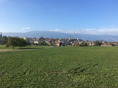 Fields around Orbe in Switzerland