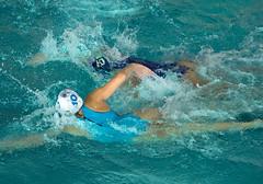 2C041272 (roel.ubels) Tags: len euro league waterpolo sport topsport utrecht uzsc 2016 krommerijn women