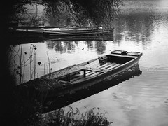Adony (.e.e.e.) Tags: autumn film water analog boat hungary explore m42 analogue duna danube filmscan donau agfaapx100 dunav agfaphoto carlzeissjenatessar2850 kodakxtoldeveloper pentaconzi epsonv350photoscanner