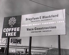 Coffee Tree (Dreyfuss + Blackford Architecture) Tags: california tree history coffee architecture project restaurant vacaville central stop valley nostalgic sacramento nut architects legacy demolished blackford 1965 dreyfuss 80036 db2081 db2571