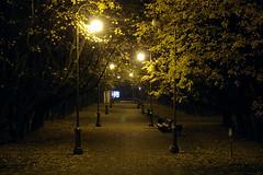 The Fall / Осень (Boris Kukushkin) Tags: autumn fall leaves night lamppost minsk allay
