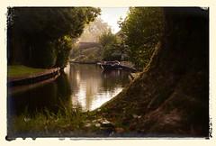 Giethoorn (papierhexe und rolly.f) Tags: netherlands boot explore kanal grn niederlande giethoorn stille venedigdesnordens rollyf