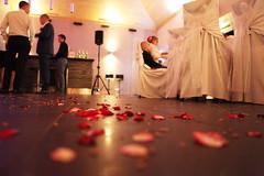 IMG_4957 (nicomorphine) Tags: wedding love romance forever weddingparty latvian forevertogether latvianwedding dolessala kazasdole