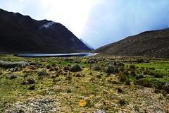 Tierra Tachirense - Paraiso (Nenaa!) Tags: naturaleza nature nikon d3100