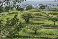 Los Guachimontones (Digital Biology) Tags: green mexico ruins pyramid ring guachimontones teuchitln