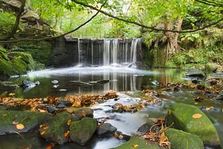 Knypersley Waterfall