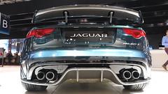 Jaguar Proyect 7 (3)
