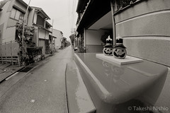 / The Usual Post (Takeshi Nishio) Tags: uv nikonfm3a  fujiacros100 ei100  16mmfisheye   spd1120deg65min filmno800