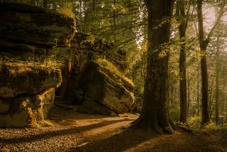 Felsburg Höhleneingang